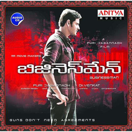 Businessman - 2013 Audio CD