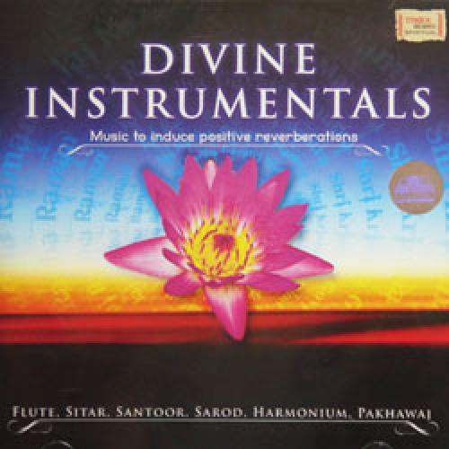 Divine Instrumentals - Music to Induce Positive Reverberations